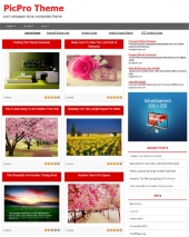 Picpro Wordpress Theme Template with Personal Use Rights