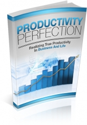 Productivity Perfection eBook with