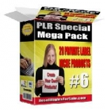 PLR Special Mega Pack eBook with Private Label Rights