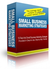 Small Business Marketing Stategies eBook with Personal Use Rights