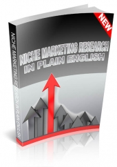 Niche Marketing Research In Plain English eBook with Personal Use Rights