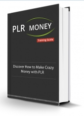 PLR Money Made Easy Video with Personal Use Rights