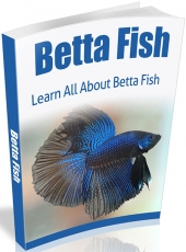 Betta Fish eBook with Master Resell Rights