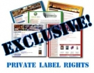 PLR Special Offer : 4 Brand New E-Books + Bonus eBook with Private Label Rights