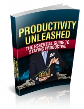 Productivity Unleashed eBook with Master Resell Rights/Giveaway Rights
