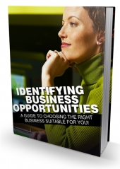 Identifying Business Opportunities eBook with Master Resell Rights