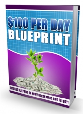100USD Per Day Blueprint eBook with Personal Use Rights