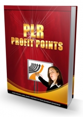 PLR Profit Points eBook with Personal Use Rights