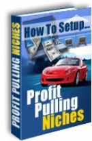 How To Setup Profit Pulling Niches eBook with Master Resale Rights