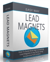 Lead Magnets eBook with Personal Use Rights