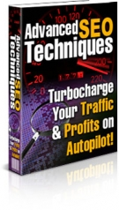 Advanced SEO Techniques eBook with Private Label Rights