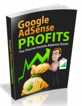 Google Adsense Profits II eBook with private label rights