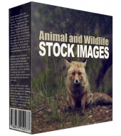 Animal and Wildlife Stock Images Graphic with Resell Rights