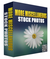 More Miscellaneous Stock Photos V32016 eBook with private label rights