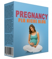 Pregnancy PLR Niche Blog V2 Template with private label rights