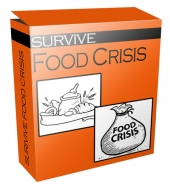 Survive Food Crisis Flipping Niche Blog Template with Personal Use Rights