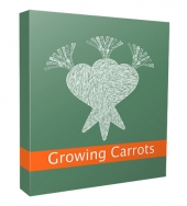 New Growing Carrots Niche Website V3 Template with Personal Use Rights