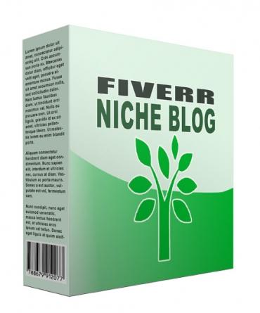 New Fiverr Flipping Niche Blog